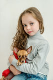 Blond kid girl with small pet dog Stock Photos