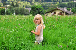 Blond kid in the grass field Stock Photography