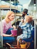 Blond kid talking to his mum while pointing up. Mother and son sitting between the rows in green house with beautiful stock photo