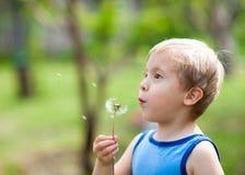 Blond liten gullig pojke blåsa en maskros i sommar royaltyfri bild