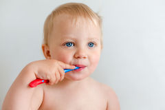 Blond little girl with tooth brush Stock Photography