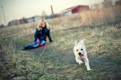 Blond meisje met haar puppy Royalty-vrije Stock Foto