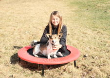 Blond meisje met hondzitting op trampoline Royalty-vrije Stock Afbeeldingen