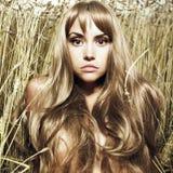 Blond meisje in tarwe Stock Afbeeldingen