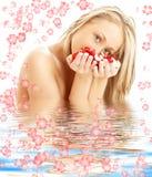 Blond met rood en wit nam toe royalty-vrije stock fotografie