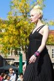 Blond model Royalty Free Stock Photo
