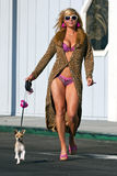 Blond Model Walking Dog Royalty Free Stock Photos