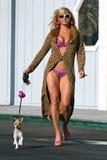 Blond Model Walking Dog Royalty Free Stock Photos