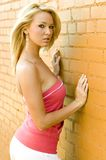 blond mody model Zdjęcia Stock