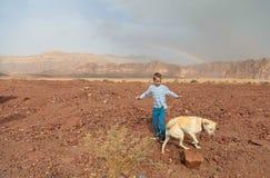 Blond pojke som plaing med den stora hunden under regnbågen i öken, T Arkivbild