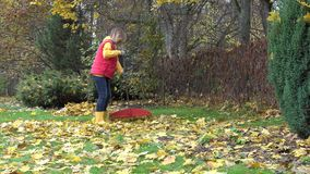Blond pretty country girl using rake to clean up of fallen leaves in garden. 4K stock footage