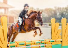 Young girl in uniform jumping with sorrel horse. Blond pretty little girl going jump a hurdle in a competition. Girl with red horse during equestrian Royalty Free Stock Photography
