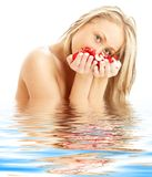 Blond with red and white rose Royalty Free Stock Images