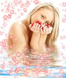 Blond with red and white rose Royalty Free Stock Photography