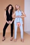 Blond sexig härlig kvinna två och glamour M för lockigt hår för brunett Royaltyfria Foton