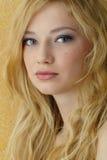 blond skönhet Royaltyfri Fotografi