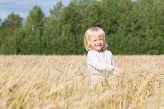 Blond Slavic happy kid boy at a ripe rye wheat field royalty free stock images