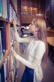 Blond student looking for book in library shelves Royalty Free Stock Photo