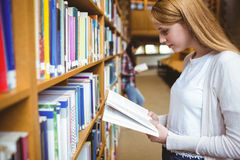 Blond student reading book in library Stock Photography