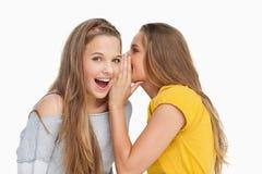 Blond student som viskar till hennes vän Arkivbild