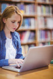 Blond student using laptop in library Royalty Free Stock Photography