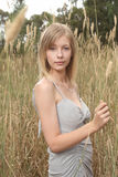 Blond in tall grass Stock Images
