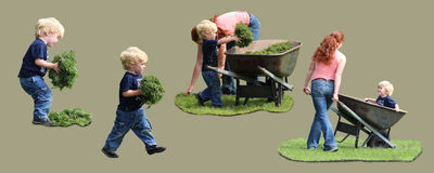 Blond Toddler working in yard with wheelbarrow. Blond Toddler helping out in the yard by picking up the mowed grass and putting it in a wheelbarrow.  Hes Stock Images