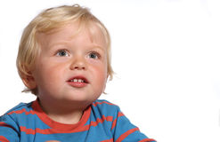 Blond two year old boy Royalty Free Stock Image