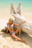 Blond woman in bikini at a hawaii beach Stock Photos