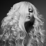Blond Woman. Curly Long Hair. BW Fashion Image Stock Photos