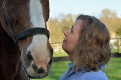Blond woman and  her  horse stock photography