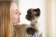 Blond woman with her Persian Cat Extreme. With hairdress Royalty Free Stock Image