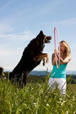 Blond woman holding hula hoop,dog jumps through Royalty Free Stock Photo