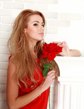Blond woman with red rose in studio, girl and flower. Beauty and love concept Stock Photography