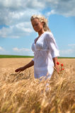 Blond woman in summer field stock photos