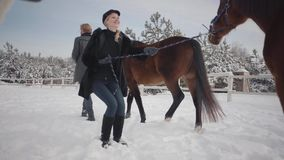 Blond woman and tall man leading two brown horses at the snow winter ranch. One stubborn animal stopped and wants to go. Further, but girl makes it walk. Happy stock video footage