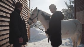 Blond woman and tall man standing with white horse at the snow winter ranch. Girl strokes animal. Happy couple spend. Blond woman and tall man standing with stock video footage