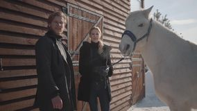 Blond woman and tall man standing with white horse at the snow winter ranch. Girl strokes animal. Happy couple spend. Blond woman and tall man standing with stock footage