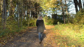 Blond woman walk autumn park road color tree leaves sunlight. Blond woman walk on autumn park forest road cover with colorful tree leaves and sunlighted stock video footage