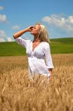 Blond woman in wheat field Stock Photos