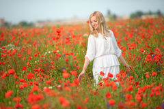 Blond woman in white dress walking thru blooming summer red flow. Ers field Royalty Free Stock Image