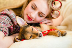 Blond young woman with curlers sleeping with her little puppy Stock Image