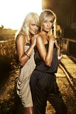 blonda eleganta två kvinnor Royaltyfria Foton
