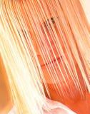 blonda super vätte Fotografering för Bildbyråer