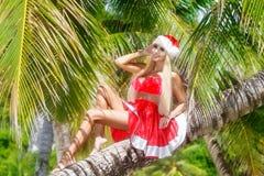 Blonde alegre hermoso en sombrero y falda de la Navidad en el jung Foto de archivo libre de regalías