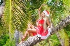 Blonde alegre hermoso en sombrero y falda de la Navidad en el jung Fotografía de archivo