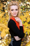 Blonde amongst the autumn leaves Royalty Free Stock Photography
