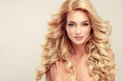 Blonde attirante de femme avec la coiffure élégante image stock