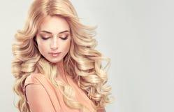 Blonde attirante de femme avec la coiffure élégante images libres de droits