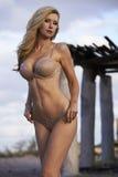 Blonde Beauty in Desert Royalty Free Stock Photos